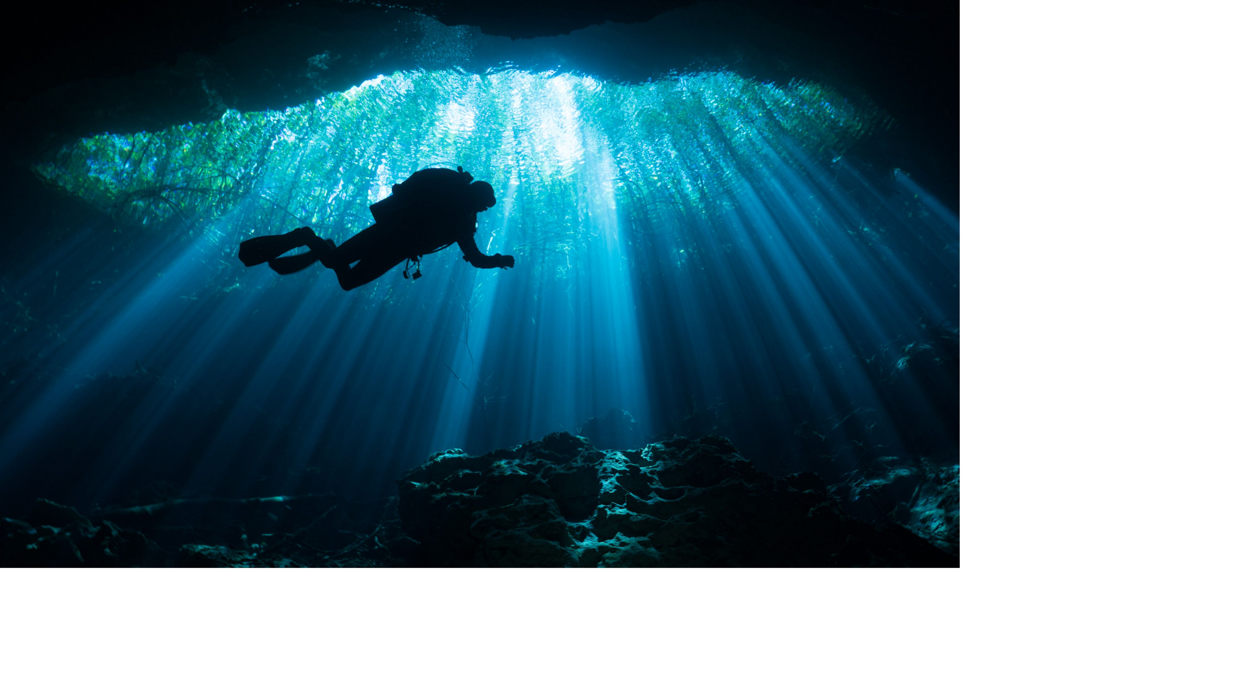 A scuba diver hovers amidst crisp light rays  shining through the trees down into Mexico's Yucatan cave system.