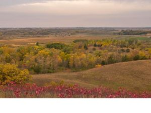 Fall on the prairie
