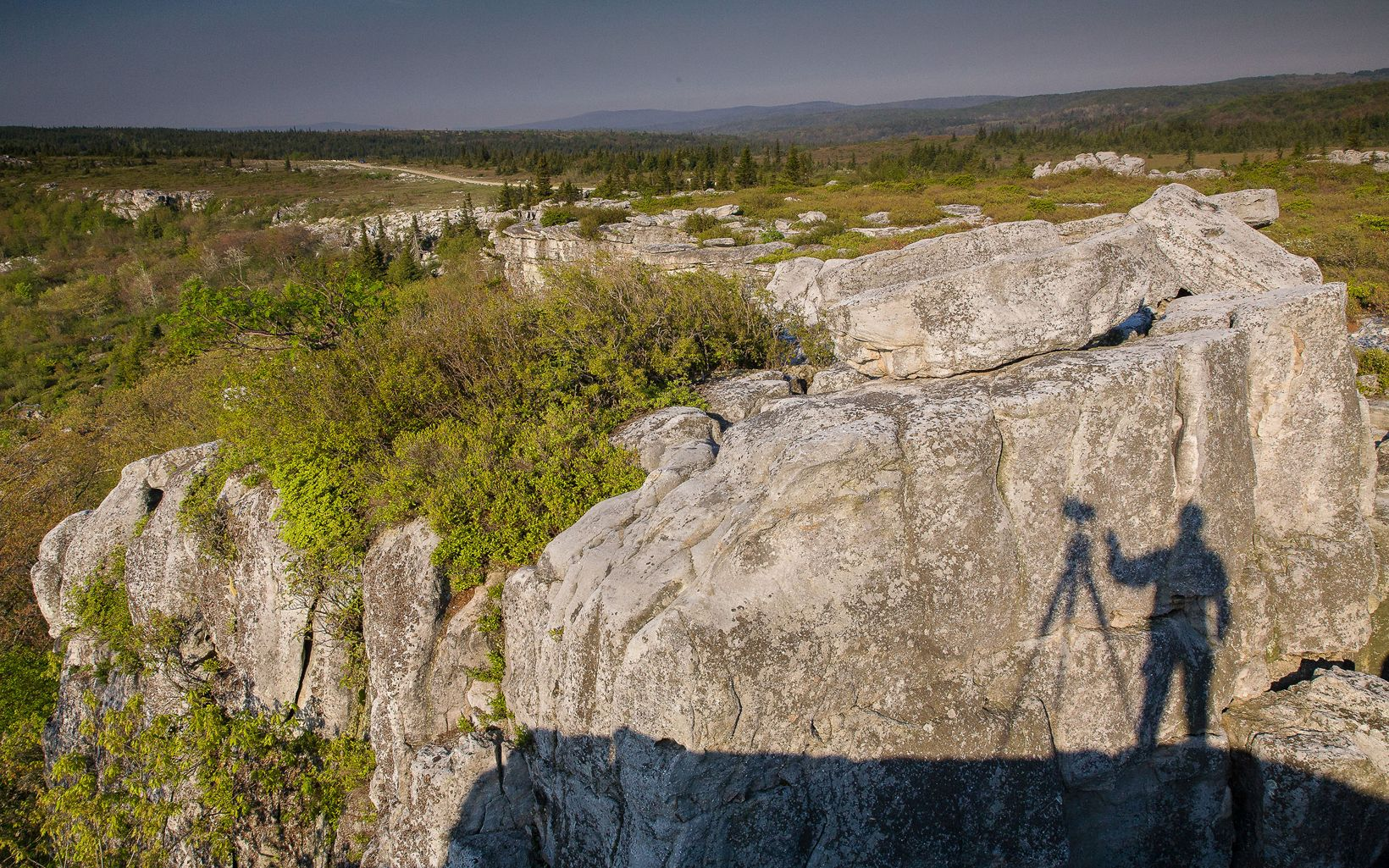 Shadow of a photographer at work in The Nature Conservancy's West Virginia Bear Rocks Preserve.
