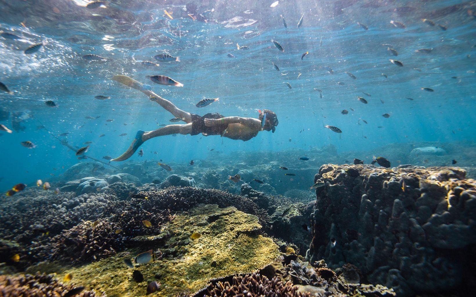 Snorkling on Lembongan Island.