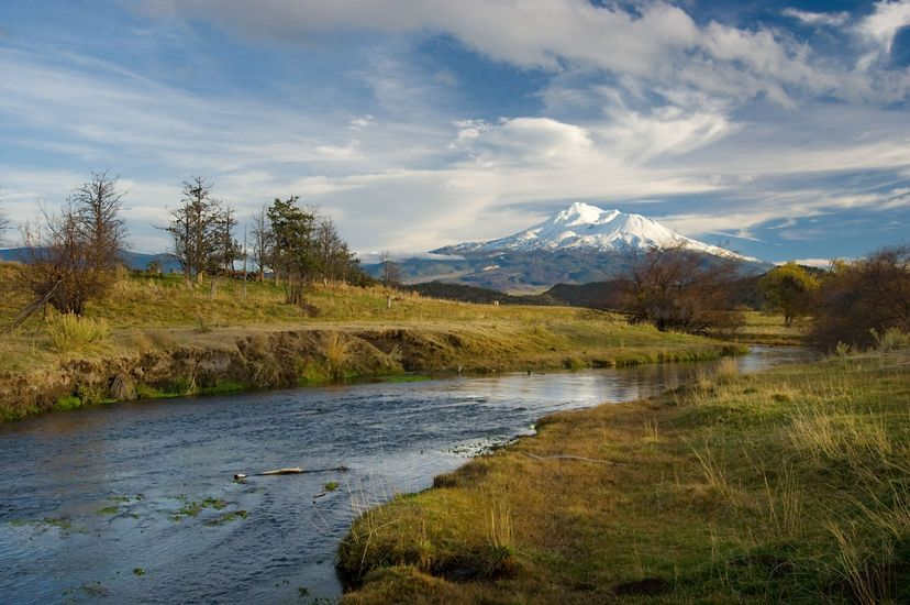 A river winding between grassy banks with snow-capped Mount Shasta in the distance.