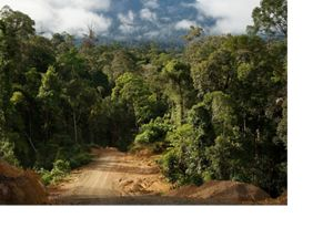 Road from Sumalindo IV base camp to the Dayak village of Long Laai, East Kalimantan, Borneo, Indonesia.