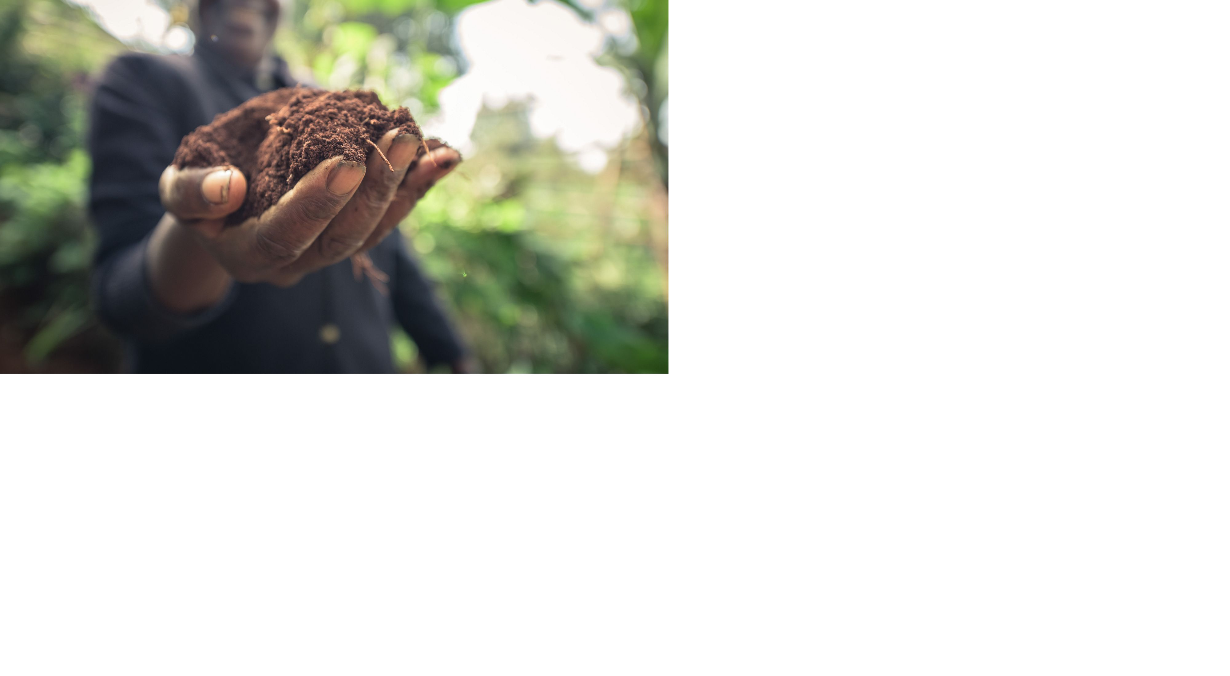 A hand holding soil