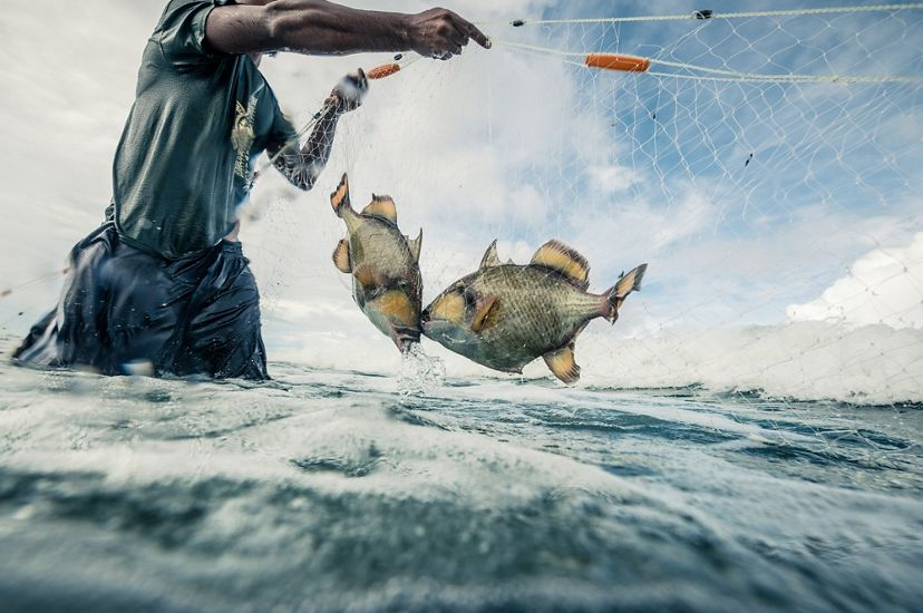 Using FishPath to help fishing communities manage their fisheries