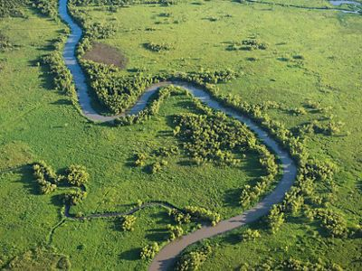 Aerial photo of a distributary in the Atchafalaya River Delta, Louisiana.