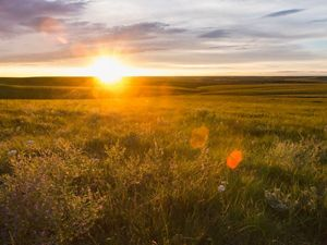 Sun sets on an open prairie field