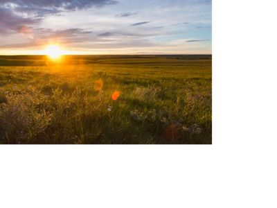 Sun setting on the horizon of vast green prairie