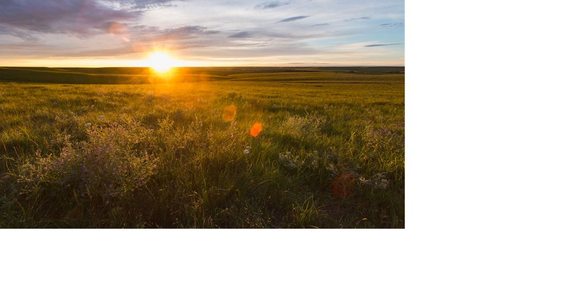Sunsetting over tallgrass prairie