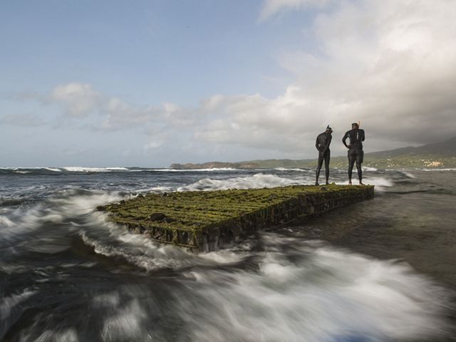 Two men in diving gear stand atop an artificial reef