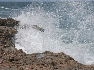 Blowing Rocks Preserve in Florida