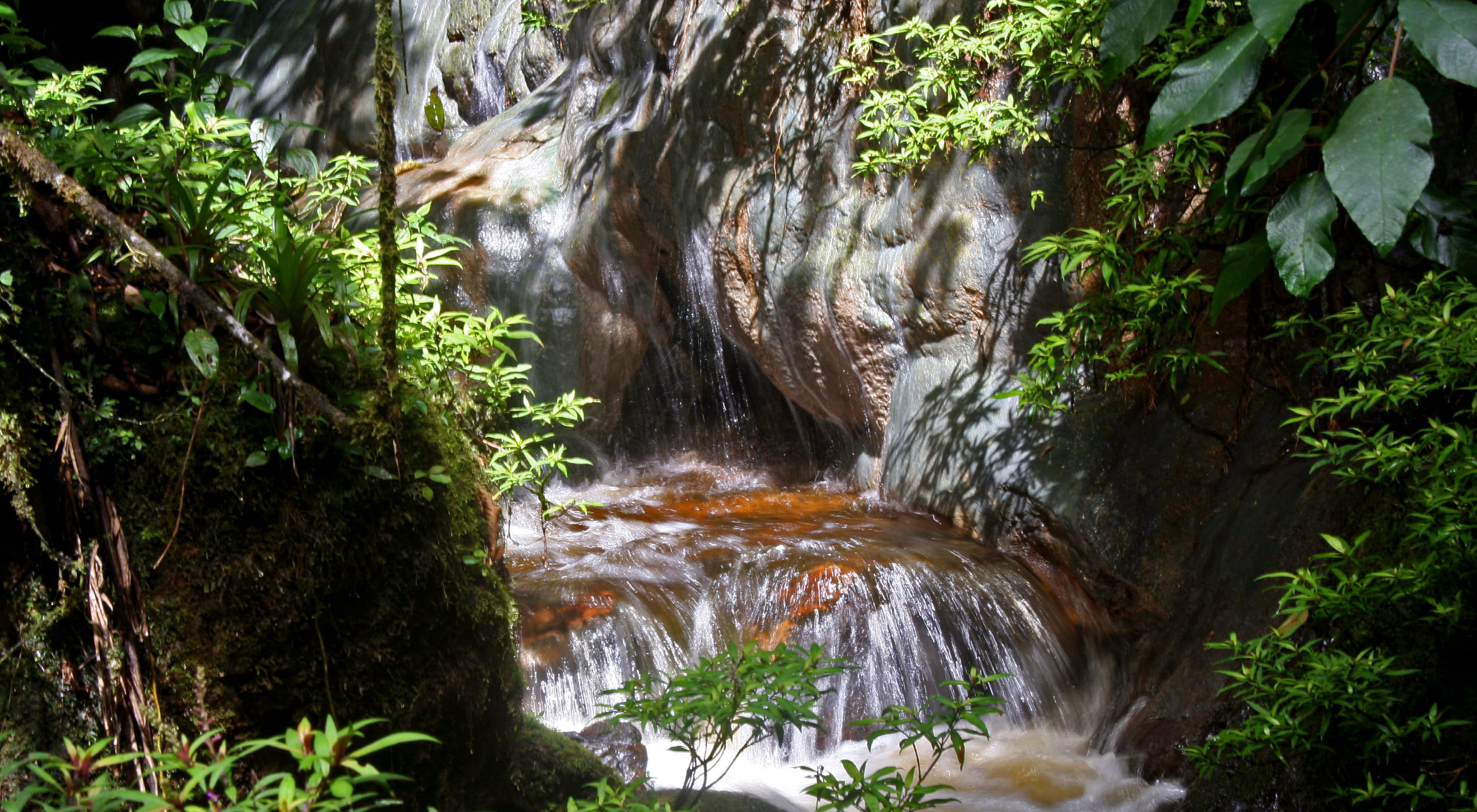 Small creek in Colombia
