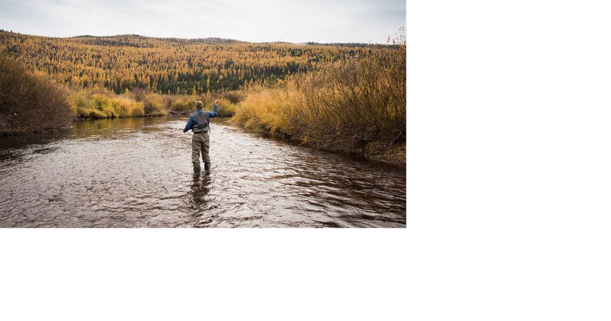 back of a man as he fly fishes.