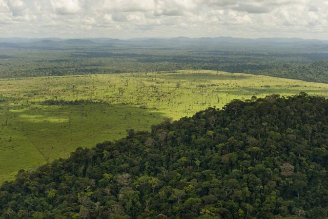 The Nature Conservancy is helping establish sustainable soy expansion in Brazil