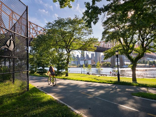 A person riding a bike away from the camera on a bike path next to a river, with a bridge and city skyline in the backgraound.