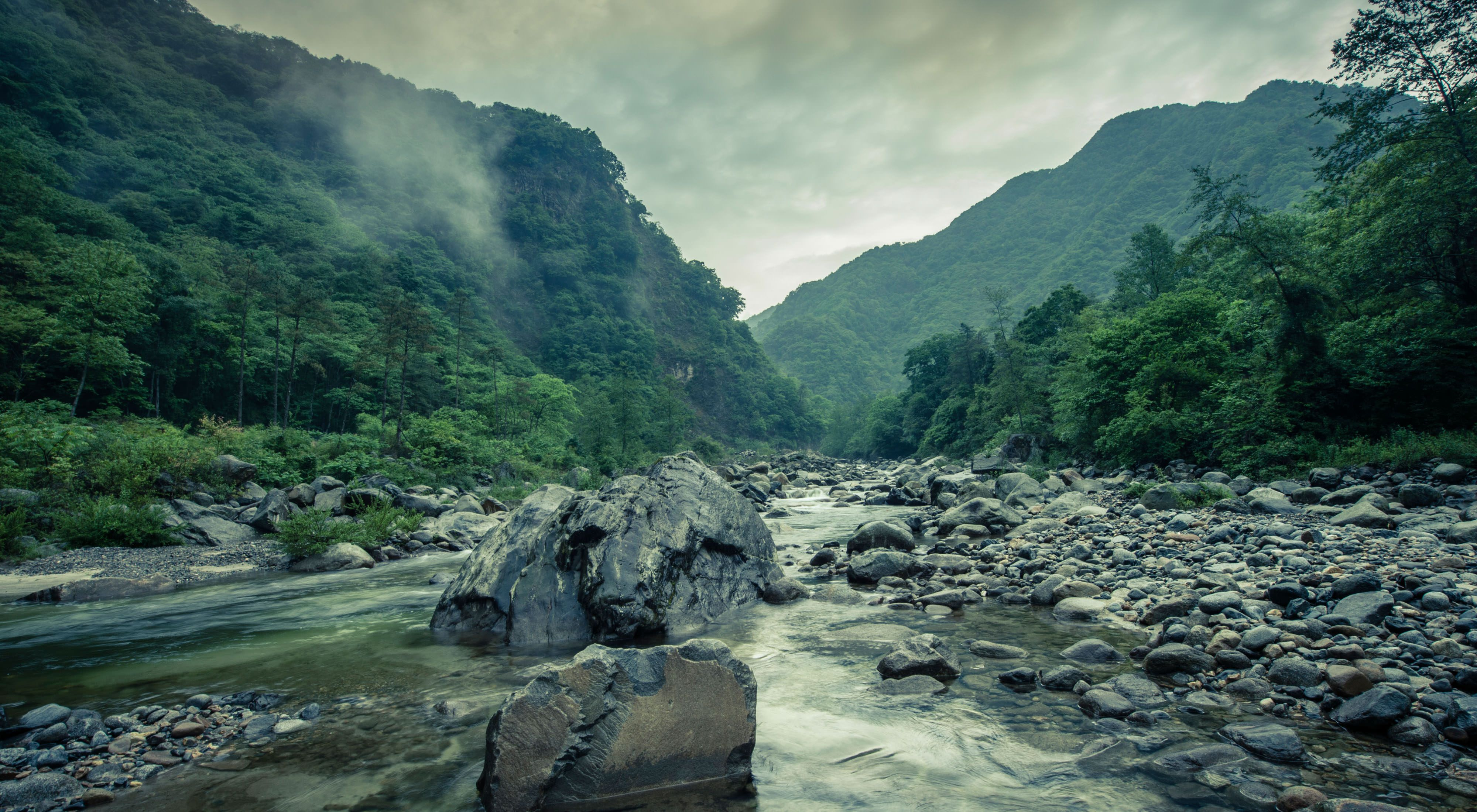 a rocky riverbed surrounded by lush greenery