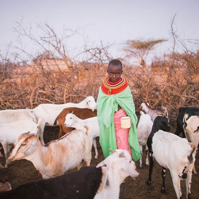 Samburu child with goats at West Gate Conservancy in No