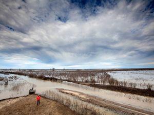 The Mollicy Farms floodplain