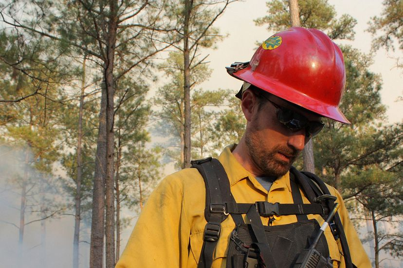 Candid photo of fire manager Sam Lindblom. A man wearing yellow fire gear and a red hard hat stands in a forest reviewing a map. Smoke from a fire rises behind him.