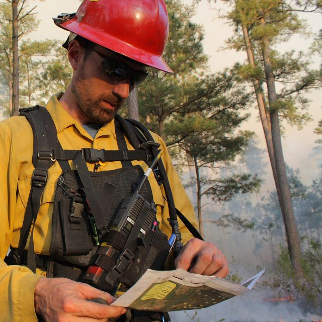 Sam Lindblom, fire manager for the Virginia Chapter of The Nature Conservancy, reviews a map to assess progress of a prescribed burn at Piney Grove Preserve.