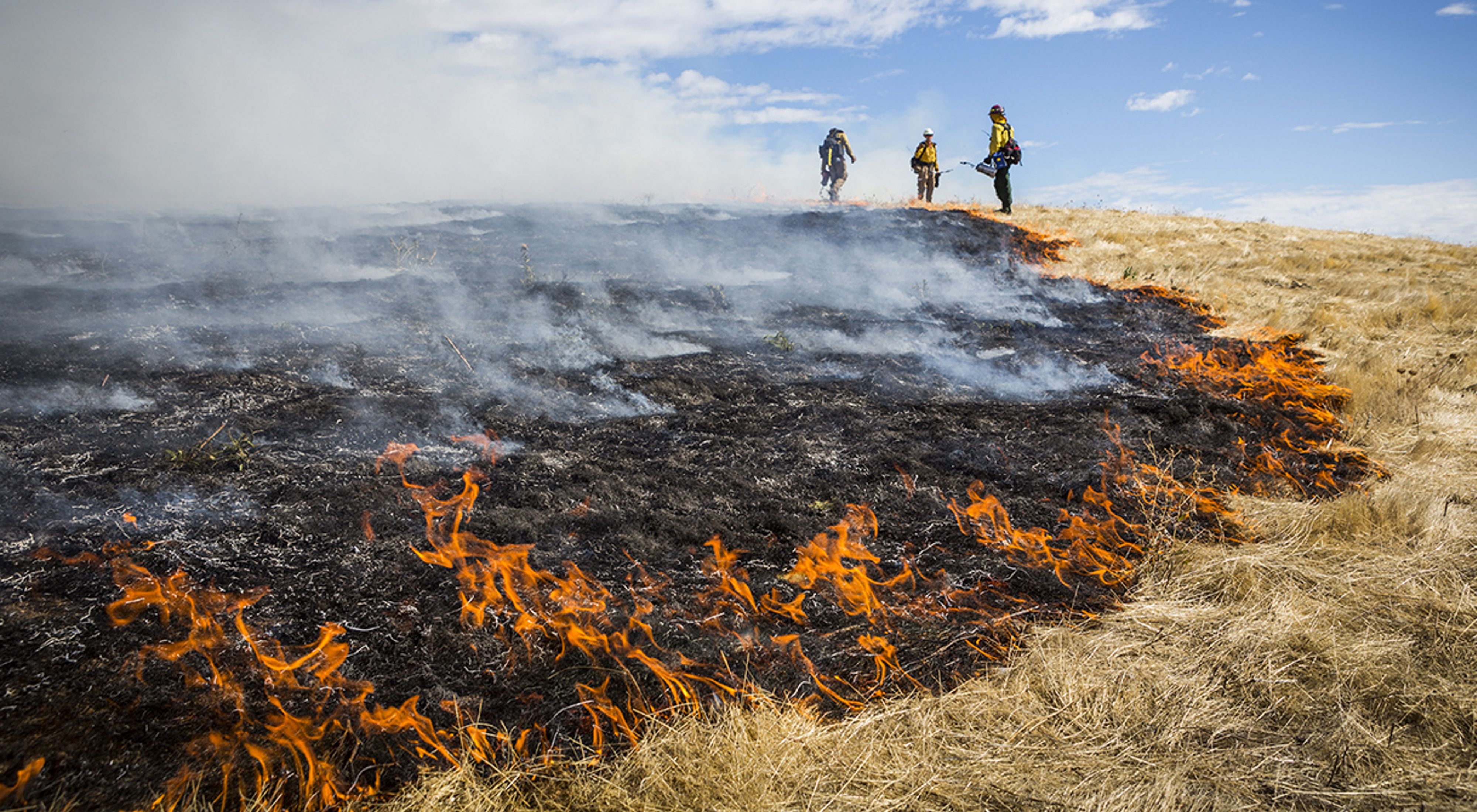 Three men work on a prescribed burn site