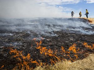 Three fireworker stand at the edge of a burning prairie