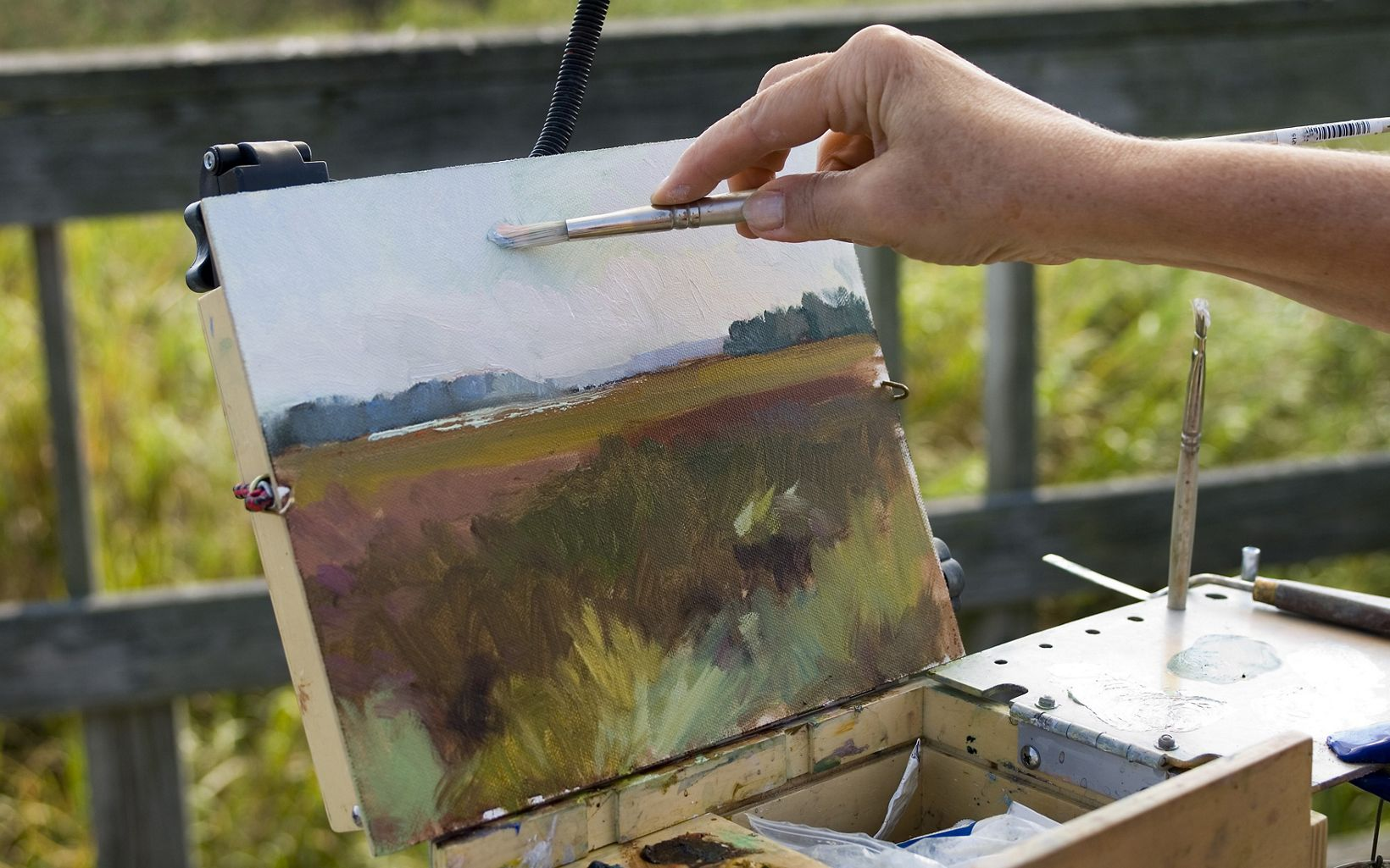 Artist Nancy Tankersley works on a plein air oil study of the landscape at King's Creek/Choptank Wetlands preserve.