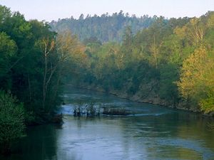 Cahaba River in Alabama in United States, North America.
