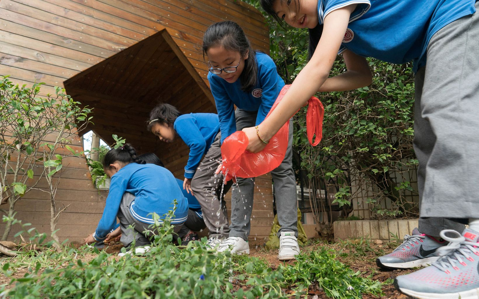 Children gather during a gardening activity at the Sinolink Primary School in Shenzhen, China. November 2017. The Sinolink Primary School in Shenzhen has implemented a number of sponge city features including permeable surfaces in their sports grounds and entrance walking areas, added rain barrels, and started a 'young naturalists' class that also teaches students about rainwater management and related gardening. The school is located in Luohu district, Shenzhen, China. TNC's Build Healthy Cities Program.