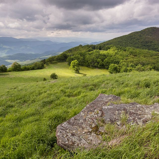 Secluded amid North Fork Mountain lies TNC's Pike Knob.