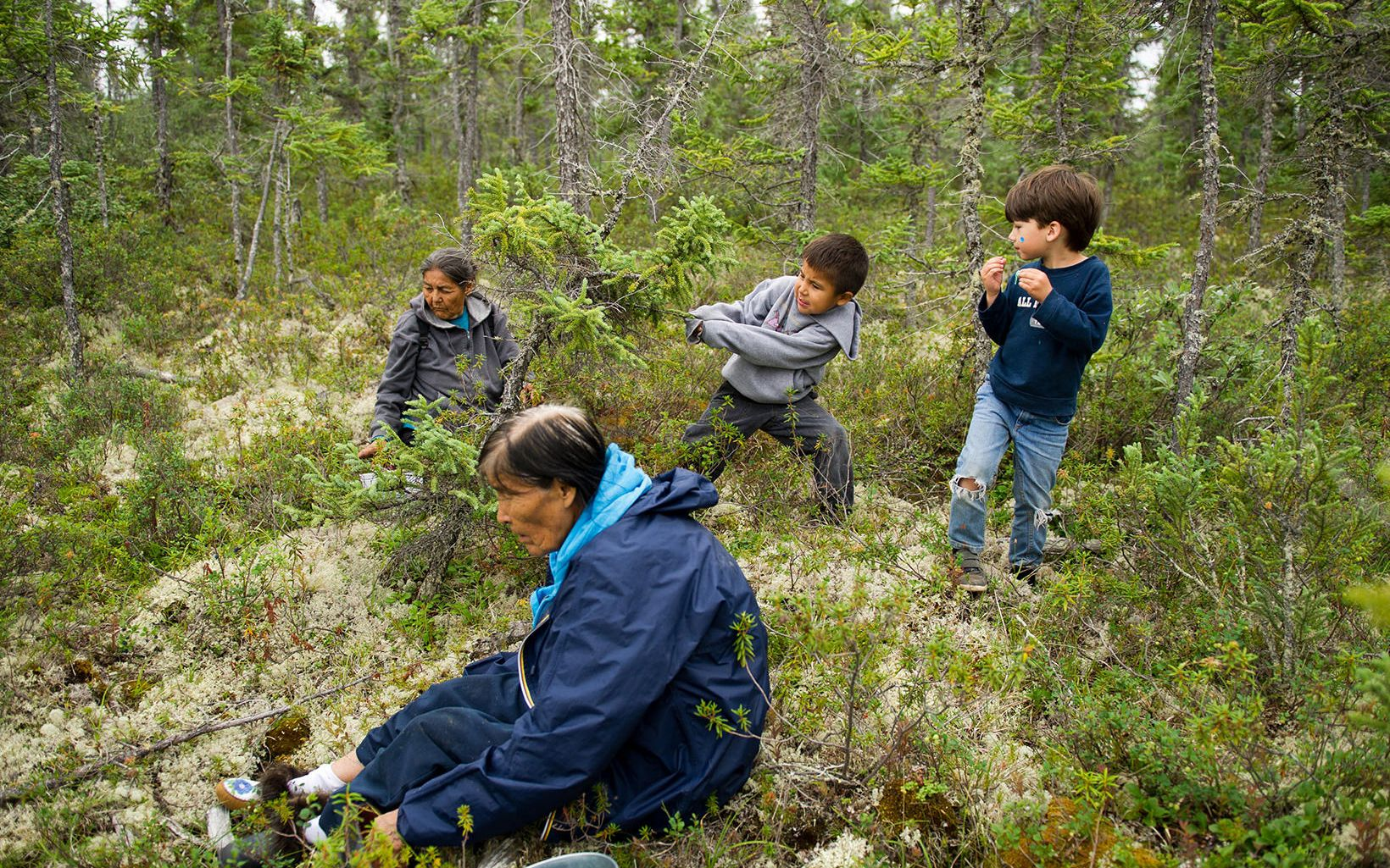 Women from the Dene Band collect blueberries in their village of Lutsel K'e.