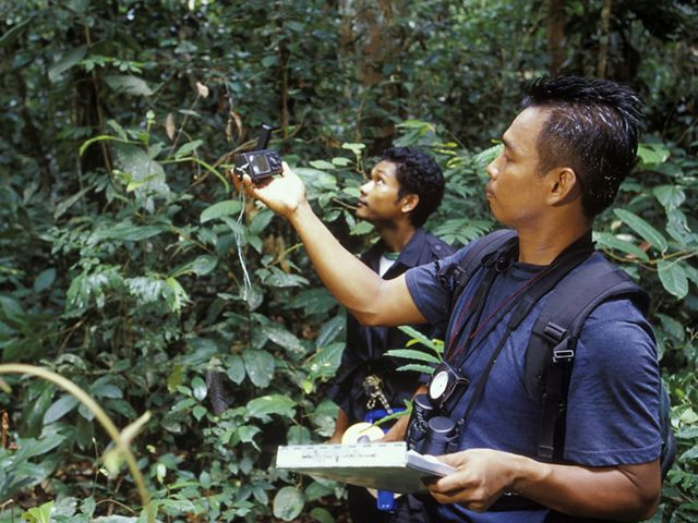 Two men hold a camera and other equipment in a Borneo forest.