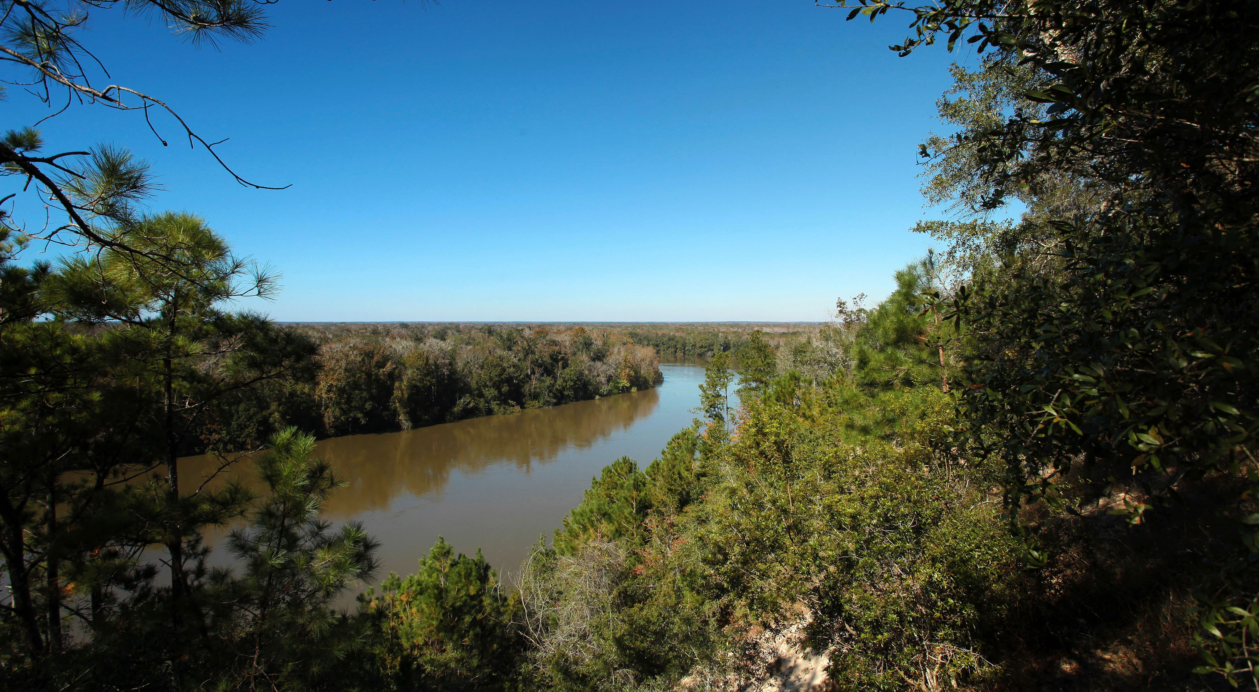 Apalachicola Bluffs and Ravines Preserve