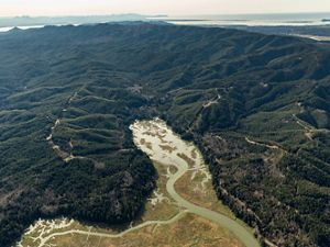 Aerial view of the Ellsworth Creek Preserve in Washington.