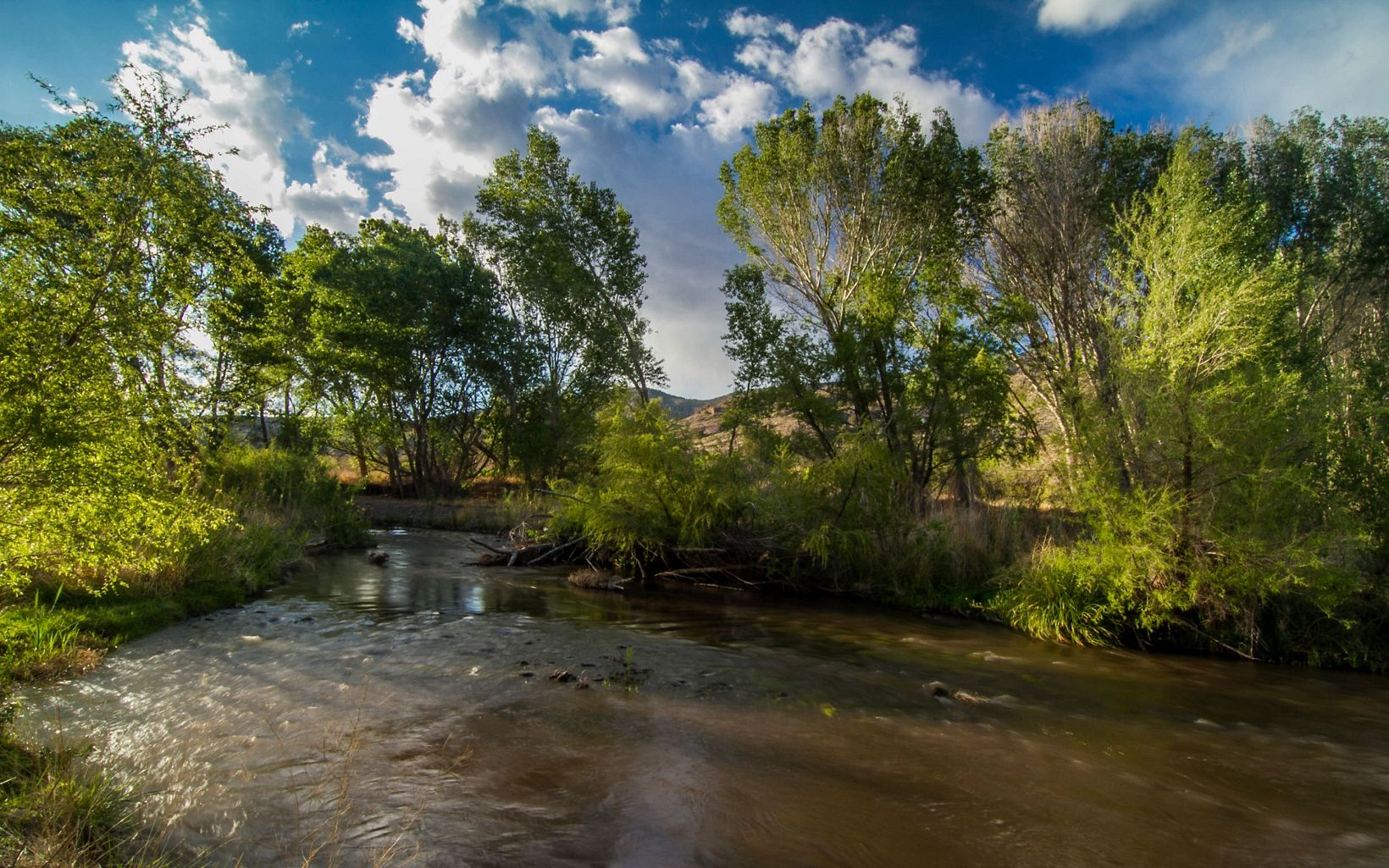 protects more than 1,200 acres of the Southwest's fragile riparian habitat and the verdant gallery woodland along the Gila River in New Mexico.