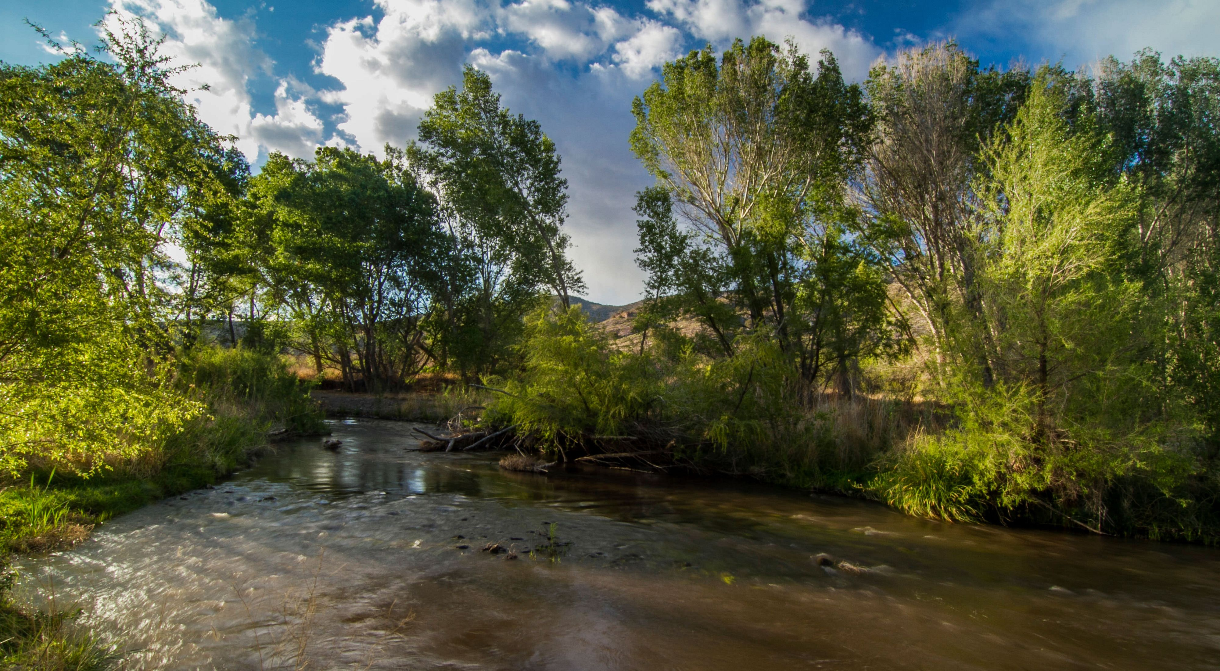 The Nature Conservancy In New Mexico
