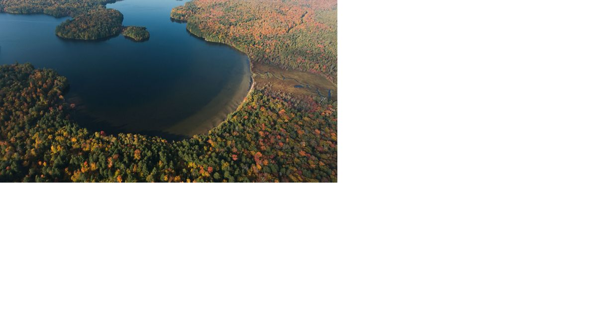aerial view of a lake surrounded by autumn trees and mountains