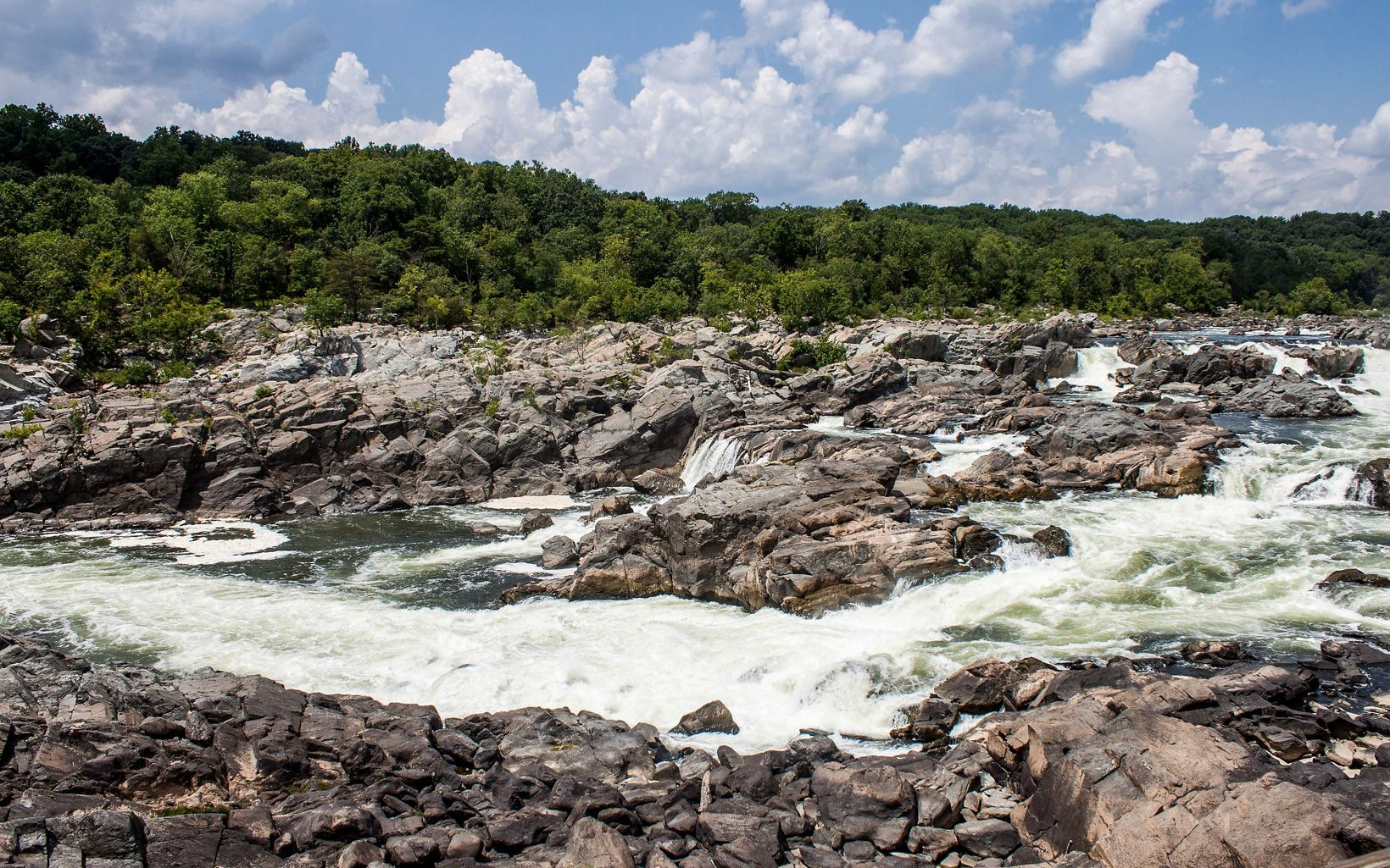 White water rushes over large rocks to create a series of short falls on the Potomac River. The river bank is thickly lined with trees.