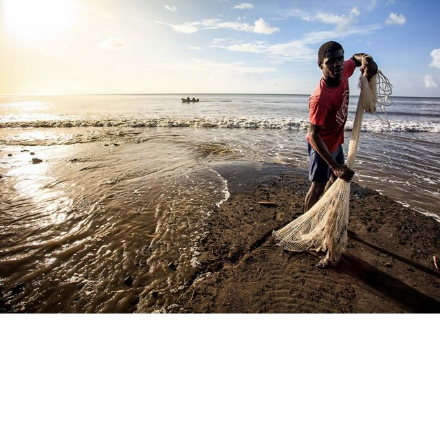 Local fisherman gathers his net on a beach in St. Vincent & the Grenadines.