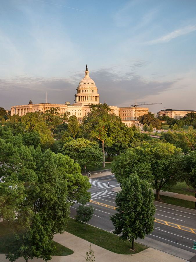 A view of the Capitol Building and trees in Washington