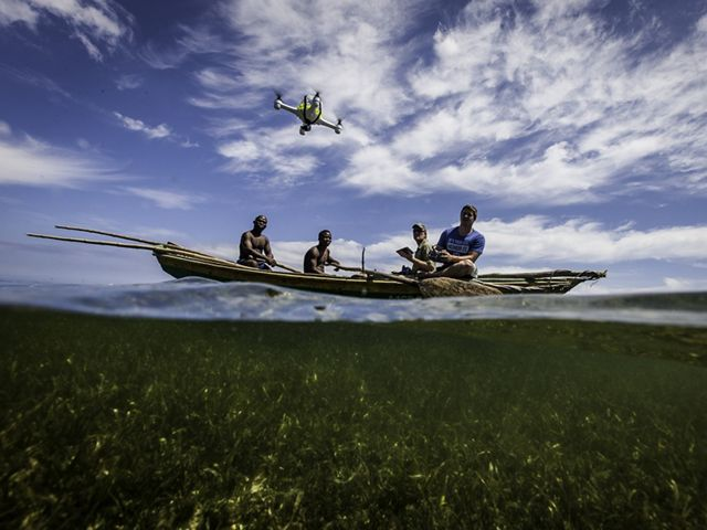 A team pilots a quad copter drone over a Red Mangrove forest.