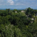 An aerial view of the ancient ruins of Tikal National Park in Guatemala.