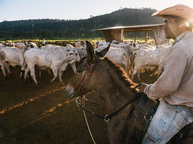 Adriano Pereira Alves, a cowboy on Farm Santa Vitoria in São Félix Do Xingu in the Brazilan Amazon.