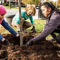 The Brightside Organization, The Nature Conservancy, UPS and Brown-Forman partnered to plant 150 trees at Shawnee Park in Louisville, Kentucky.