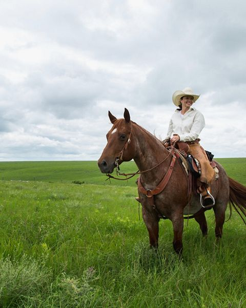 Woman smiles from atop a brown horse in green field.
