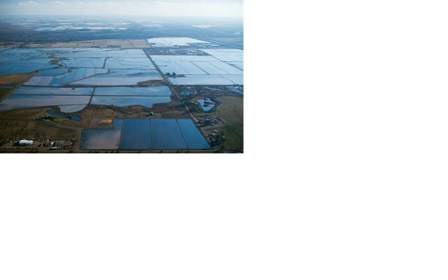 Aerial view of flooded rice fields in California's Sacramento Valley.