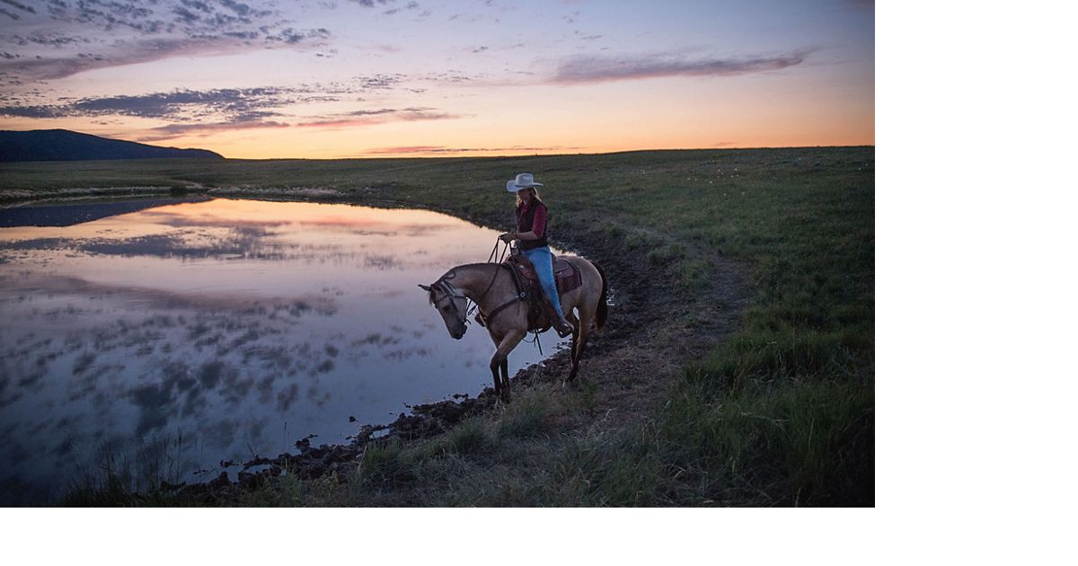 Montana Grassbank Project: In 2002, the Conservancy began leasing parts of the ranch to neighboring ranchers who were suffering from several years of severe drought.