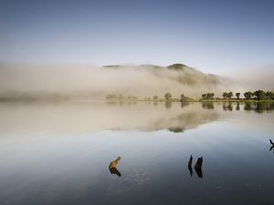 Chaihuin River at dawn with mist and low cloud, Valdivian Coastal Reserve, Chaihuin, Los Rios, Chile.