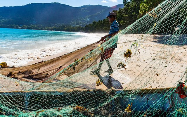 Mackrel fishermen in Seychelles fish along the shore with small boats and siene nets, trapping fish against the beach and hauling the catch up onto the sand.