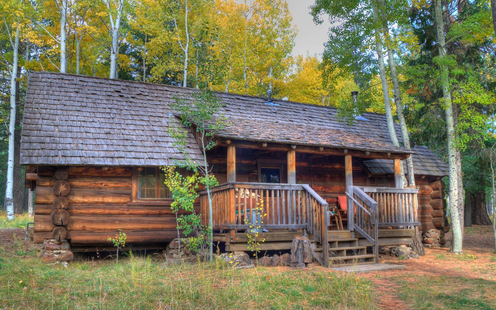 A rustic brown log cabin is surrounded by pine trees and birch trees with golden leaves.