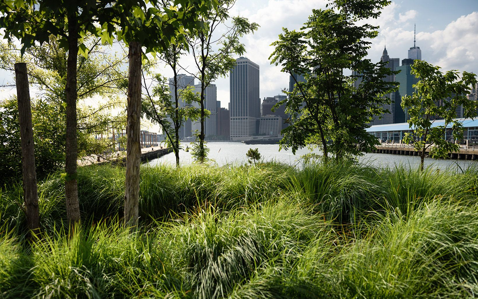 Brooklyn Bridge Park looking towards Manhattan, New York